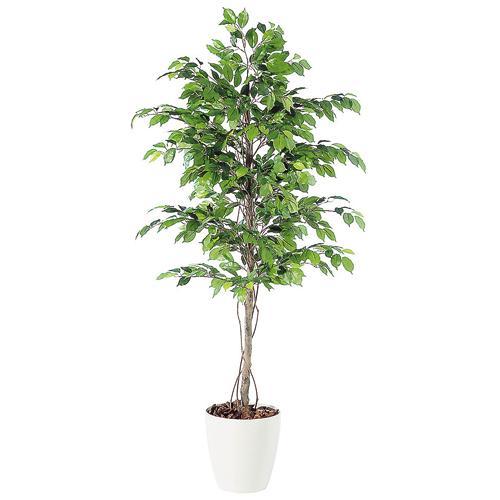 代引不可【フィッカス ベンジャミナ RP鉢タイプ】W90cm×H200cmフェイクグリーン 人工観葉植物 インテリアグリーン オフィスグリーン 人工樹木 造花ベンジャミナ:オフィスグリーン