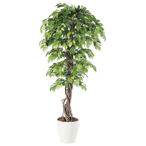 代引不可【フィッカス ベンジャミナ リアナ RP鉢タイプ】W100cm×H200cmフェイクグリーン 人工観葉植物 インテリアグリーン オフィスグリーン 人工樹木 造花ベンジャミナ:オフィスグリーン