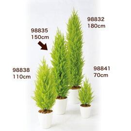 ゴールドクレストツリー(150)98835