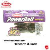 10%off Berkley / バークレイ 【 PowerBait MaxScent  Flatworm 3.6inch / マックスセント フラットワーム 3.6インチ 】 バークレー 木村建太 キムケン  (代引き不可 クリックポスト / 同梱発送可)