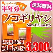 ポイント ノコギリヤシ supplement サプリメント