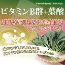 ビタミンB群+葉酸(約3ヶ月分)送料無料 サプリメント サプリ 葉酸 鉄分 ビタミンM オーガランド 健康 美容 ビタミン B2 B3 ビール酵母 食物繊維 ミネラル カルシウム 葉酸サプリ _JB_JH 2