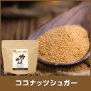 ココナッツシュガー (150g) 送料無料 砂糖 低GI 天然糖 ココナッツ ココヤシ糖 ココ...