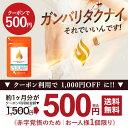 【クーポン で 500円 ポッキリ 】 コレウスフォルスコリ...