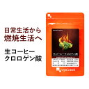 生 コーヒー クロロゲン酸(約3ヶ月分)送料無料 コーヒーが苦手な方へもオススメ! 燃焼系 ダイエッ