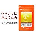 イチョウ葉エキス(約6ヶ月分)送料無料 サプリメント サプリ