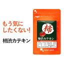 柿渋カテキン(約6ヶ月分)送料無料 サプリメント サプリ ニ...