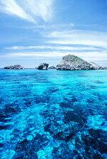 世界自然遺産の海