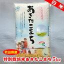 【秋田県産】特別栽培米あきたこまち白米5kg...