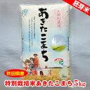 【秋田県産】特別栽培米あきたこまち胚芽米5kg 1