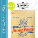 ドリームパワー(パン用粉)25kg※国産麦100%