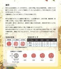 印鑑/実印/はんこ/黒水牛印鑑