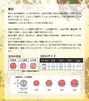 印鑑/実印/銀行印/はんこ/オランダ水牛