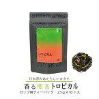 香る煎茶トロピカル カップ用 ティーバッグ 2.5g×10ケ入り フレーバーティー 国産 日本茶 香りのお茶 香り かおり 煎茶 バリエーション おしゃれ プレゼント おすすめ