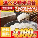 28-hinohikari-10