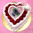 写真ケーキ スイートハート ケーキ バースデーケーキ お誕生...