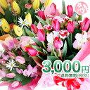 送別 退職 誕生日 記念日 送別 退職 祝い 選べる3色 季節限定 チューリップ の 花束 ♪…