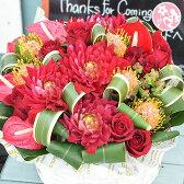 誕生日 結婚記念日「ゴージャスアレンジーソル」 sol 開店祝い オーダーメイド 送別 退職 お見舞い アレンジ 【送料無料】