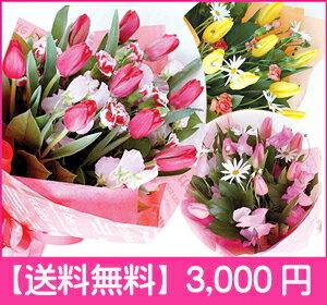 3月31日までの発送日限定!選べる3色!♪可愛いチューリップの花束♪卒業お祝い・入学お祝い・...