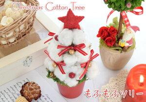 クリスマスコットンツリーもふもふツリー花 ギフト 花 コットン ツリー アレンジ 「もふもふフ...
