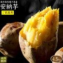 (訳あり)安納芋4.5kg 送料無料(ご家庭用)さつまいも5kg箱(内容量4.5kg)