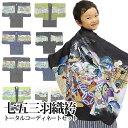 七五三 男の子 5歳 男児 羽織袴 セット お祝い着 10点...
