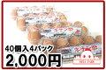 キチン卵40個(10個入り×4パック)【北海道産】生卵・たまごかけご飯・たまご好きにはたまらない