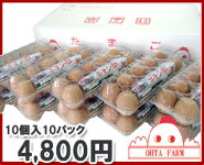 キチン卵100個【10個入り×10パック】