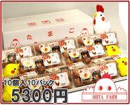 チャリティーファフィ卵100個【10個入り×10パック】