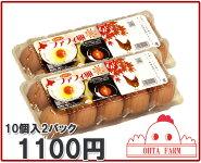 【チャリティーファフィ卵20個(10個入×2パック)】【北海道産】