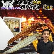 【お試し】中川屋の焼きあなご3尾分白焼き・蒲焼き・きざみよりお選びくださいうなるほど美味い穴子料理のこの逸品鰻の蒲焼きや煮あなごとは違う上品な味【RCP】【楽ギフ_のし】