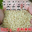 カルゲン米は上質のタンパク質が豊富で美味!メール便にて発送いたします。【玄米】カルゲン1%...