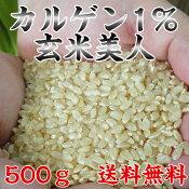 【玄米】カルゲン1%玄米美人500g25年度産石川県産コシヒカリ玄米減農薬・有機質肥料栽培【送料無料】【RPC】