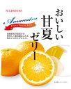 【送料無料】杉本屋製菓おいしい甘夏ゼリー22g×7個(20袋入×1ケース)
