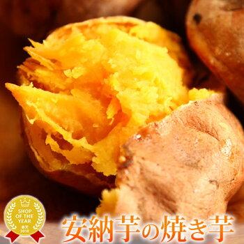 種子島産安納芋の焼き芋おいもや国産のあま〜い薩摩芋さつまいも)安納いもあんのういもやき芋個包装1本から購入OKお試しに焼きいもスイーツさつま芋電子レンジAA1