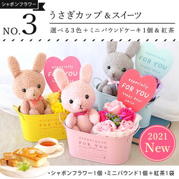 送料無料!父の日ギフト2018シャボンフラワー選べる花とスイーツセット[シャボンフラワーB][花]AB11