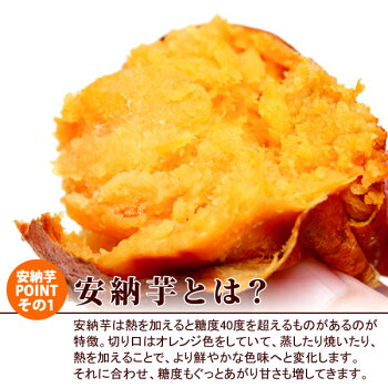 種子島産安納芋の焼き芋おいもや国産のあま〜い薩摩芋さつまいも)安納いもあんのういもやき芋個包装1本から購入OKお試しに焼きいもスイーツさつま芋電子レンジAA7