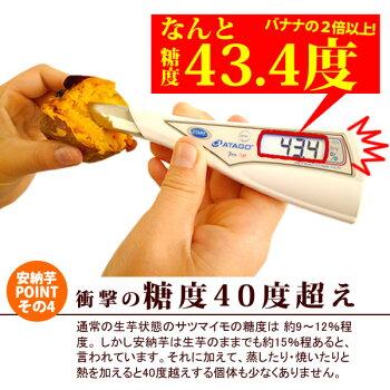 種子島産安納芋の焼き芋おいもや国産のあま〜い薩摩芋さつまいも)安納いもあんのういもやき芋個包装1本から購入OKお試しに焼きいもスイーツさつま芋電子レンジAA10