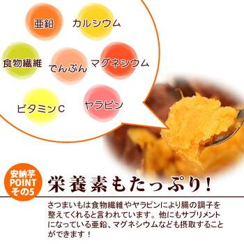 種子島産安納芋の焼き芋おいもや国産のあま〜い薩摩芋さつまいも)安納いもあんのういもやき芋個包装1本から購入OKお試しに焼きいもスイーツさつま芋電子レンジAA11