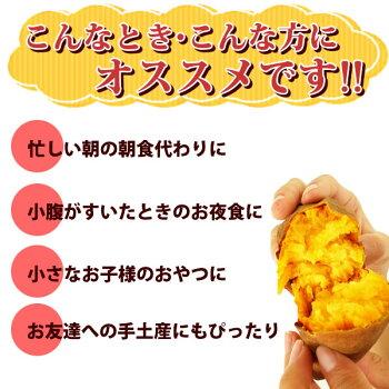 種子島産安納芋の焼き芋おいもや国産のあま〜い薩摩芋さつまいも)安納いもあんのういもやき芋個包装1本から購入OKお試しに焼きいもスイーツさつま芋電子レンジAA16