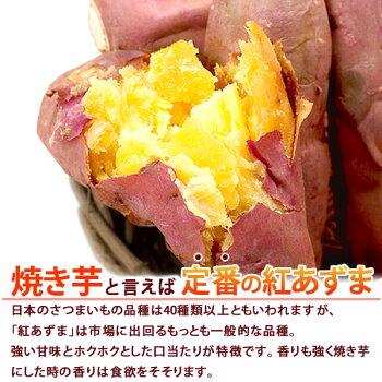 国産さつまいもを使用!人気の黄金色の焼き芋紅あずまのサツマイモTVで話題の薩摩芋ダイエットにも!電子レンジ3分で焼きいもが完成!人気やきいも(1本単位)AA7