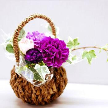 母の日プレゼント花母の日ギフト早割カーネーションムーンダスト生花アレンジメント送料無料スイーツお菓子ギフトセット9