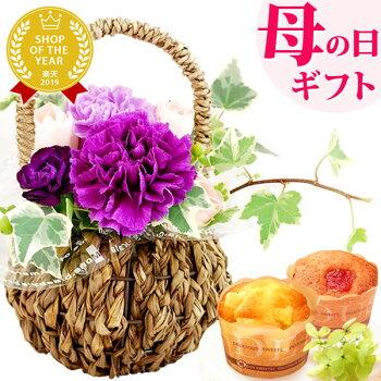 母の日プレゼント花母の日ギフト早割カーネーションムーンダスト生花アレンジメント送料無料スイーツお菓子ギフトセット1