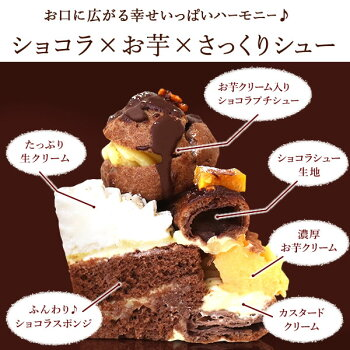 \早割!/クリスマスケーキ2020チョコレートケーキパリブレストチョコプレゼントスイーツお菓子ギフト4号【静岡AA】10