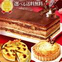 クリスマスケーキ 予約 超早割 送料無料 クリスマスプレゼント お祝い ケーキ 送料無料 オペラ タ ...