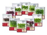マイクロハーブ(アマランサス・バジル・ボリジ・パクチー・クレイジービー・レッドマスタード・ロックチャイブ・紫蘇グリーン・紫蘇パープル・四川花椒菜)お任せ3パック※上記10種の中から当店が3種選択します