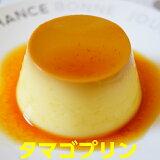 プリン 送料無料 卵 お歳暮 年賀 茨城 タマゴプリン85g×12個 添加物不使用 卵が熱で固まる力で作られる本格カスタードプリン 卵プリン ギフト ランキング1位