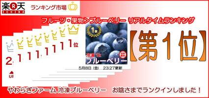 【送料無料】冷凍ブルーベリー1kg茨城県小美玉やわらぎファーム産地直送
