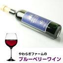 やわらぎファーム ワイン 「ブルーベリーワイン 500ml×1本」 送料無料 やわらぎファームのブルベリーを100%使用 女性向け 甘口 ワイン ブルーベリー 茨城