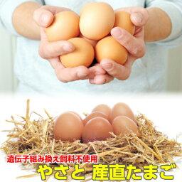 卵 タマゴ やさと産直たまご M50個 送料無料 安全安心 産み立て産地直送 たまご 玉子 茨城 ギフト お取り寄せ